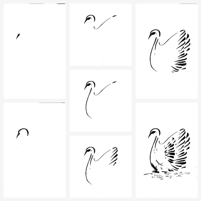 Step by step drawing of a bird.