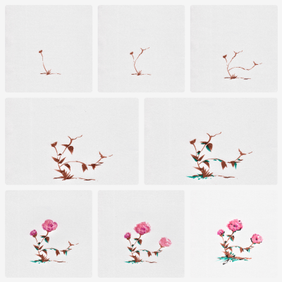 Step by step drawing of a flowering plant.